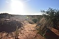 Kalahari desert, Kalahari, Northern Cape, South Africa (20538810045).jpg