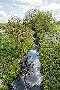 Kalletal - 2015-05-02 - LIP-013 Aberg-Herrengraben (25).jpg