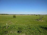 Kalnciema pļavas (dabas liegums) 12.jpg