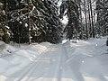 Kellokoski - Winter Scenery (02.02.2010) - panoramio.jpg