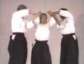 Ken Ota Aikido.png