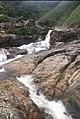 Kerala water fall.jpg