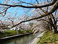Kitashinmachi, Toyama, Toyama Prefecture 930-0023, Japan - panoramio (3).jpg