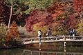 Kobe municipal forest botanical garden20n3872.jpg