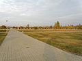 Komunalny Cmentarz Południowy w Warszawie 2011 (18).JPG