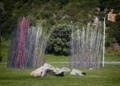 Kon Dimopoulos - Pacific Grass - Wellington0001.png