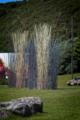 Kon Dimopoulos - Pacific Grass - Wellington0004.png