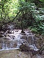 Krushuna waterfalls 013.jpg