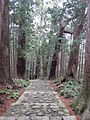 Kumano Kodo pilgrimage route Daimon-zaka World heritage 熊野古道 大門坂45.JPG