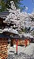 Kyoto, Gion - panoramio (3).jpg