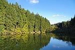 LSG GS 00059 Harz (LK Goslar) - Oberer Grumbacher Teich (3).jpg