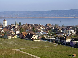 La Neuveville - La Neuveville town, the surrounding vineyards and Lake Biel