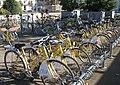 La Rochelle-vélos.JPG
