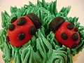 Ladybugs in grass frosting on a cupcake.jpg