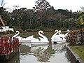 Lago Negro, Gramado (6051605548).jpg
