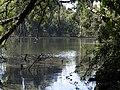Lago safari madrid.jpg