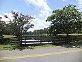 Lake Irma, Lakeland 05.JPG