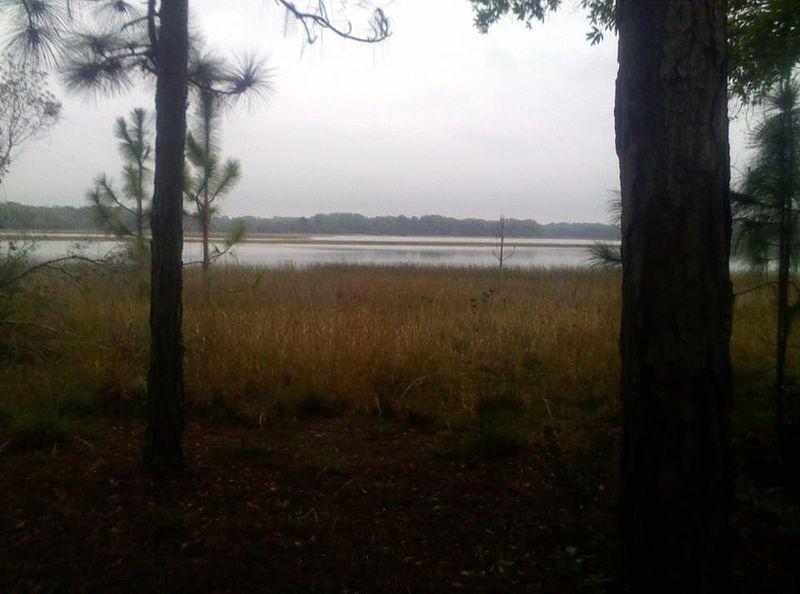 File:Lake Rogers in Odessa Florida.jpg