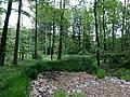 Landschaftsschutzgebiet Strothheide Melle Datei 26.jpg