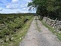 Lane to Kirkby Fell - geograph.org.uk - 718243.jpg