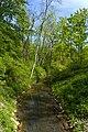 Langenauer Ried -Fluss.jpg