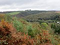 Largin Woods - October 2014 - panoramio (2).jpg