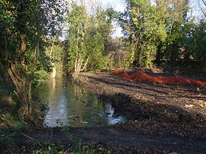 Sudbrook (stream) - Latchmere Stream outfall pond outside Ham Gate, Richmond Park, December 2012