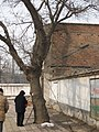 Left house and tree 拆迁遗物 - panoramio.jpg