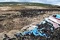Leitir (Letter) forest - geograph.org.uk - 1268702.jpg
