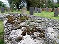 Lichen, Gravestone at St Denys Church (geograph 2378069).jpg