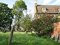Lilac time in Teigh churchyard-geograph-4305256-by-John-Sutton.jpg