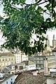 Limmat View from Lindenhof hill, Zurich (Ank Kumar) 05.jpg