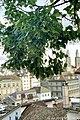 Limmat View from Lindenhof hill, Zurich (Ank Kumar) 06.jpg