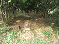Lingshan Islamic Cemetery - tomb - DSCF8376.JPG