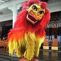 Lion dance2015.jpg