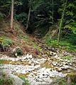 Littenbach zusammenfluss Fallbach Sulzbächli.jpg