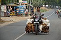Live Chicken Transportation - Foreshore Road - NH 116B - New Digha - East Midnapore 2015-05-02 8910.JPG