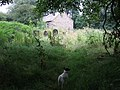 Llanstinan Church, North Pembrokeshire - geograph.org.uk - 205967.jpg
