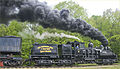 Logging Train Out of Cass Station (WV) May 2013 (9090000906).jpg