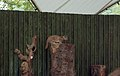 London Zoo, London (310135) (9453808425).jpg