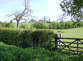 Looking back to Little Brington church - geograph.org.uk - 489327.jpg