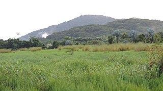 Eubenangee, Queensland Suburb of Cairns Region, Queensland, Australia