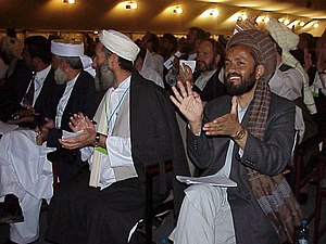 2002 loya jirga - Participants in the 2002 loya jirga