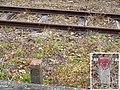 MT-Higashi Nagoyakō Station-Boundary stones.jpg