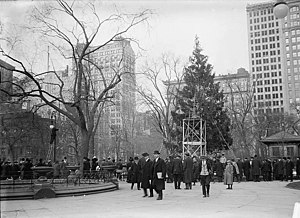Christmas Tree In Madison Square Park, C.1912