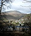 Maentwrog through the trees - panoramio.jpg