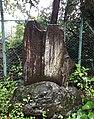 Makino-shinichi-hi.jpg