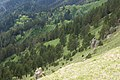 Maly Tkhach, Adygea, Малый Тхач, Склоны долины Афонки, Адыгея.jpg