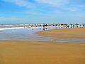Mandarmani sand beach.....jpg