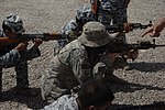 Marksmanship Training DVIDS197379.jpg